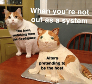 the host: When you're not  out as a system  The host,  watching from  the headspace  Alters  pretending to  be the host