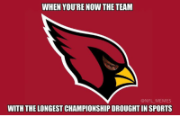 Arizona Cardinals, Nfl, and Arizona: WHEN YOU'RE NOW THE TEAM  @NFL MEMES  WITH THE LONGEST CHAMPIONSHIP DROUGHTIN SPORTS Poor Arizona Cardinals fans, waiting 69 years and counting