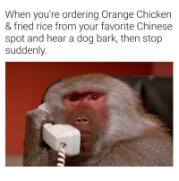 Chicken, Chinese, and Orange: When you're ordering Orange Chicken  & fried rice from your favorite Chinese  spot and hear a dog bark, then stop  suddenly. 😐😐😐😐😐😐😐
