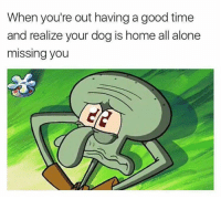 That sad moment...: When you're out having a good time  and realize your dog is home all alone  missing you That sad moment...