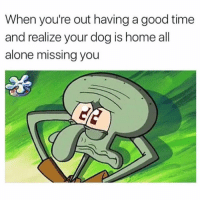Being Alone, Funny, and Memes: When you're out having a good time  and realize your dog is home all  alone missing you SarcasmOnly