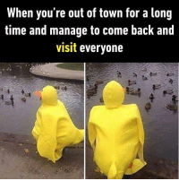 9gag, Cute, and Memes: When you're out of town for a long  time and manage to come back and  visit everyone They will be surprised by how tall I am now. Follow @9gag for more cute memes. 9gag duck costume pranks
