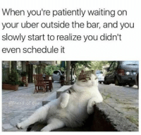 Memes, Uber, and Patient: When you're patiently waiting on  your uber outside the bar, and you  slowly start to realize you didn't  even schedule it  @Friend of Bae That moment... (@friendofbae)