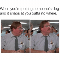 Wtf betch?😧 truth relatable qotd wordsofwisdom lol meme officespace betches wtf: When  you're petting SOmeone's dog  and it snaps at you outta no where. Wtf betch?😧 truth relatable qotd wordsofwisdom lol meme officespace betches wtf