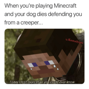 It cost everything: When you're playing Minecraft  and your dog dies defending you  from a creeper...  u/Kentucky952  TodayI lost more than you could ever know It cost everything