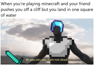 Excuse the poorly fitted armor: When you're playing minecraft and your friend  pushes you off a cliff but you land in one square  of water  As you can see, I am not dead Excuse the poorly fitted armor