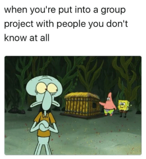 SpongeBob, Project, and Group: when you're put into a group  project with people you don't  know at all with Spongebob and Patrick