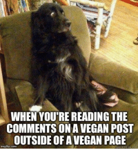 Meme, Vegan, and Lifestyle: WHEN YOU'RE READING THE  COMMENTS ON A VEGAN POST  OUTSIDE OF AVEGAN PAGE  imgflip.com  quickmmême.com When you'r reading the comments on a vegan post outside of a vegan page and suddenly you lose your faith in humanity all over again. / vegan meme / vegan humor / vegan lifestyle / veganism