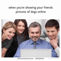 Literally me (fb: wholesome memes): when you're showing your friends  pictures of dogs online  www.shutterstock com 166529339 Literally me (fb: wholesome memes)