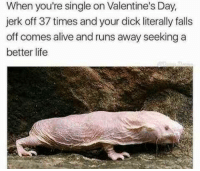"Alive, Life, and Memes: When you're single on Valentine's Day,  jerk off 37 times and your dick literally falls  off comes alive and runs away seekinga  better life <p>I MUST ESCAPE via /r/memes <a href=""http://ift.tt/2nvR5sO"">http://ift.tt/2nvR5sO</a></p>"