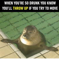 Wait a second...just a second. https://9gag.com/gag/aWq4jOA/sc/funny?ref=fbsc: WHEN YOU'RE SO DRUNK YOU KNOW  YOU'LL THROW UP IF YOU TRY TO MOVE Wait a second...just a second. https://9gag.com/gag/aWq4jOA/sc/funny?ref=fbsc
