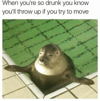 Drunk, Girl Memes, and Throw Up: When you're so drunk you know  you'll throw up if you try to move Room is spinning but it's also kind of zen u know? @mybestiesays