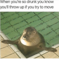 Drunk, Girl Memes, and Throw Up: When you're so drunk you know  you'll throw up if you try to movee *squints one eye open to read texts* I'm totalllyyy fine