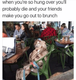 Friends, Girl Memes, and Hung: when you're so hung over you'll  probably die and your friends  make you go out to brunch Everything hurts and I'm dying