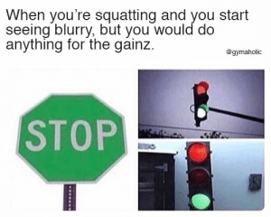 When you're squatting and you start seeing blurry, but you would do anything for the gainz.  More motivation: https://www.gymaholic.co  #fitness #motivation #gymaholic #meme: When you're squatting and you start  seeing blurry, but you would do  anything for the gainz  @gymaholic  STOP When you're squatting and you start seeing blurry, but you would do anything for the gainz.  More motivation: https://www.gymaholic.co  #fitness #motivation #gymaholic #meme