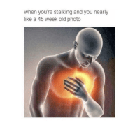 The pain is real: when you're stalking and you nearly  like a 45 week old photo The pain is real