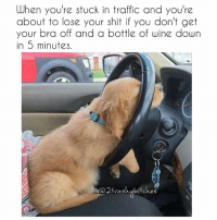 serenitynow 2trashybitches twotrashyoriginal: When you're stuck in traffic and you're  about to lose your shit if you don't get  your bra off and a bottle of wine down  in 5 minutes.  otvashubutches serenitynow 2trashybitches twotrashyoriginal