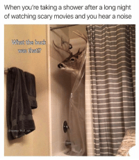 Funny, Movies, and Shower: When you're taking a shower after a long night  of watching scary movies and you hear a noise  What the buck  was thatl?  @some bull ish 24 Funny Animal Pictures You Really Just Need To See For Yourself