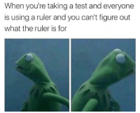 Memes, Ruler, and Test: When you're taking a test and everyone  is using a ruler and you can't figure out  what the ruler is for That moment... (@memes)