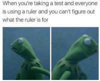 Ruler, Test, and You: When you're taking a test and everyone  is using a ruler and you can't figure out  what the ruler is for
