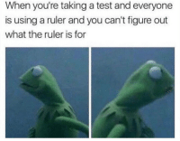 Lol, Memes, and Ruler: When you're taking a test and everyone  is using a ruler and you can't figure out  what the ruler is for Me lol