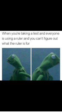 Ruler, Test, and MeIRL: When you're taking a test and everyone  is using a ruler and you can't figure out  what the ruler is for Meirl