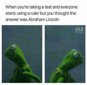 meirl: When you're taking a test and everyone  starts using a ruler but you thought the  answer was Abraham Lincoln  SEE  MORE meirl