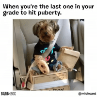 """Beard, Memes, and Puberty: When you're the last one in your  grade to hit puberty.  AED AND  BARK BOX  michcant """"Mom says I'm a late bloomer and it's not a race."""" . One day you'll grow into your beard @michcant"""