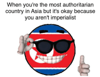 When you're the most authoritarian  country in Asia but it's okay because  you aren't imperialist Muh imperialism