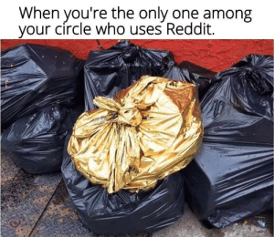 Instagram normies: When you're the only one among  your circle who uses Reddit. Instagram normies