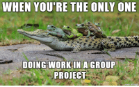 WHEN YOU'RE THE ONLY ONE  DOING WORK INA GROUP  PROUECT  made on Enngur Thankfully, the groups are usually not that big.