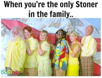 Family, Memes, and 🤖: When you're the only Stoner  in the family..  bongs @bluntsnbongs420