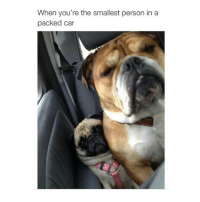 my squishy: When you're the smallest person in a  packed car my squishy