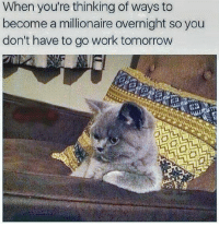 Memes, Work, and Tomorrow: When you're thinking of ways to  become a millionaire overnight so you  don't have to go work tomorrow