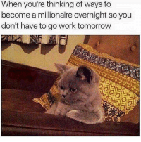 Gym, Work, and Tomorrow: When you're thinking of ways to  become a millionaire overnight so you  don't have to go work tomorrow 🤔🤔🤔