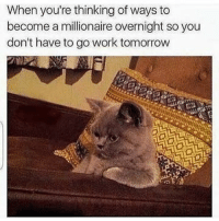 Funny, Work, and Tomorrow: When you're thinking of ways to  become a millionaire overnight so you  don't have to go work tomorrow I hate work 🙄