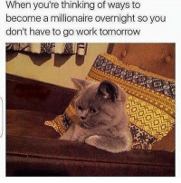 Memes, 🤖, and Millionaire: When you're thinking of ways to  become a millionaire overnight so you  don't have to go work tomorrow Ugh anyone have an idea??