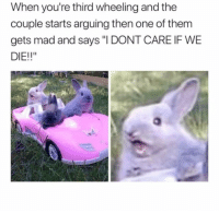 "Memes, Http, and Mad: When you're third wheeling and the  couple starts arguing then one of them  gets mad and says ""I DONT CARE IF WE  DIE!!"" <p>Third Wheeling via /r/memes <a href=""http://ift.tt/2BpkbiU"">http://ift.tt/2BpkbiU</a></p>"