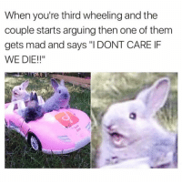 "Funny, Meme, and Mad: When you're third wheeling and the  couple starts arguing then one of them  gets mad and says ""I DONT CARE IF  WE DIE!!"" I'm dying @meme.w0rld 😭😭"