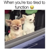 Tag someone that's been there 😂😂👇: When you're too tired to  function Tag someone that's been there 😂😂👇