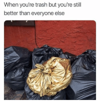SarcasmOnly: When you're trash but you're stil  better than everyone else SarcasmOnly