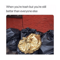 Trash, Girl Memes, and You: When you're trash but you're stil  better than everyone else me > you