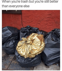 Memes, Trash, and 🤖: When you're trash but you're still better  than everyone else Glowed up! 😂