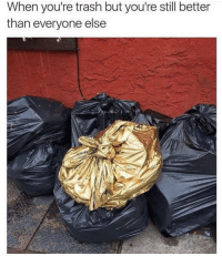 Trash, Good, and Still: When you're trash but you're still better  than everyone else We trash but we good trash