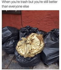 Trash, Got, and Still: When you're trash but you're still better  than everyone else Got to stand out from the crowd!