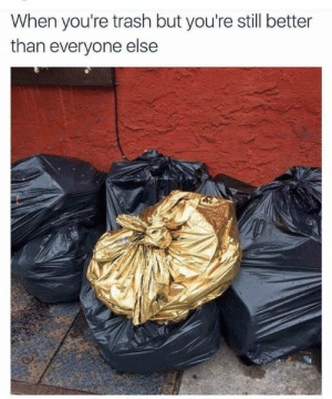 Trash, Still, and Youre: When you're trash but you're still better  than everyone else Golden 👌