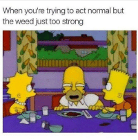 Weed, Strong, and Weeds: When you're trying to act normal but  the weed just too strong Who can relate?! 😩😂💯 https://t.co/2CzD5TjrvK