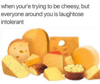 when your'e trying to be cheesy, but  everyone around you is laughtose  intolerant This is BRIElliant