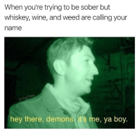 Memes, Weed, and Wine: When you're trying to be sober but  whiskey, wine, and weed are calling your  name  hey there, demons it's me, ya boy. It's Saturday tho 🕺🏻