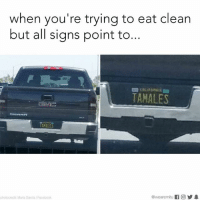 You can't argue with the universe.: when you're trying to eat clean  but all signs point to...  TAMALES  TAMALES  photocredit Maria Garcia /Facebook You can't argue with the universe.